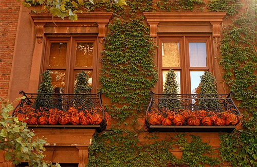 Autumn in New York finds pumpkins galore, even on balconies in Manhattan's posh Gramercy Park neighborhood. [Photo by Bill Cunningham/NYT]