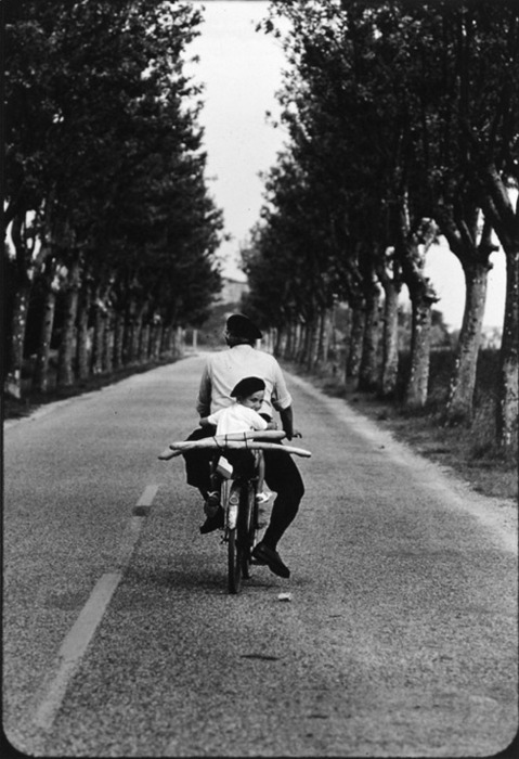 "In ""Provence 1955,"" Elliott Erwitt's iconic black-and-white photograph of French country life, a man pedals a bicycle down a deserted road flanked by two parallel lines of tall trees. A young boy sitting on back of the bike turns around to look at the photographer. Man and boy wear dark berets. Two long baguettes are strapped on the back of the bicycle, their horizontal lines contrasting with the vertical composition of riders, road, and trees. [Source: Grains of Light]"